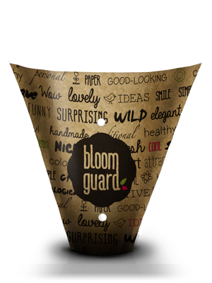 bloom guard pure paper